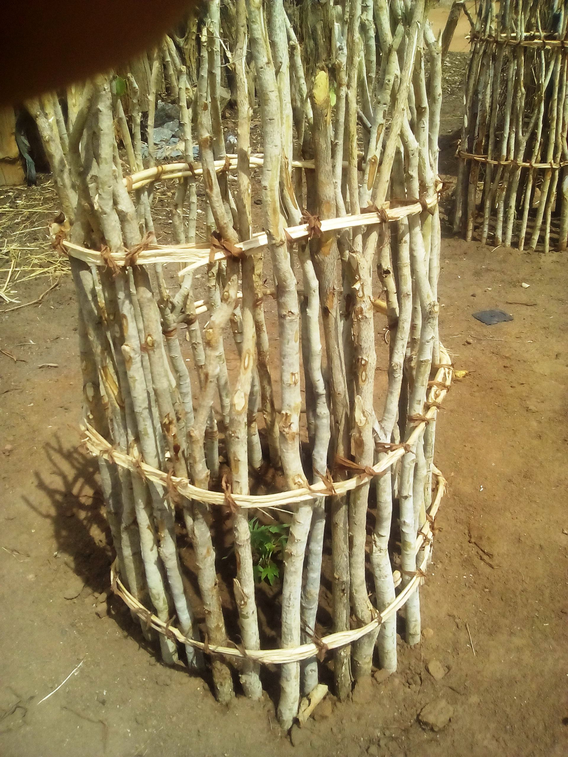 20161227-goat-proofing-in-mumbi-community-forests